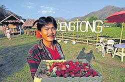 В Таиланде развивают агротуризм