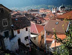 Черногорская туристическая ассоциация разместила раненых нацистов из Украины в своих отелях