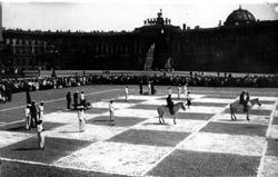 Международный день шахмат в Петербурге (2014)