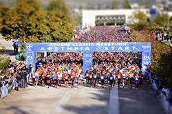 Традиционный марафон прошел в Греции