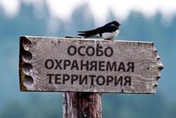 В Петербурге будут увеличены особо охраняемые территории более чем в 2 раза