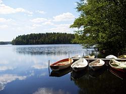 Водоёмы Финляндии в этом сезоне не смогли порадовать купальщиков